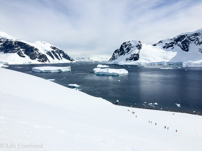 Antarctica-iPhone-3